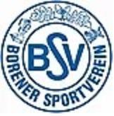 Borener SV